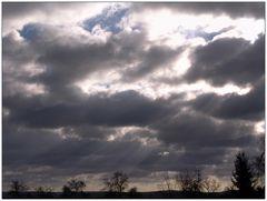 Wetterbericht - Himmighofen - 01.03.08 10.24Uhr der Morgen nach *Emma*