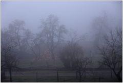 Wetterbericht - Himmighofen - 13.02.2008 7.40°°