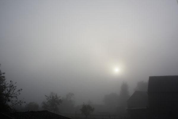 Wetterbericht von 21.10. 9.20 Himmighofen    -0.5°