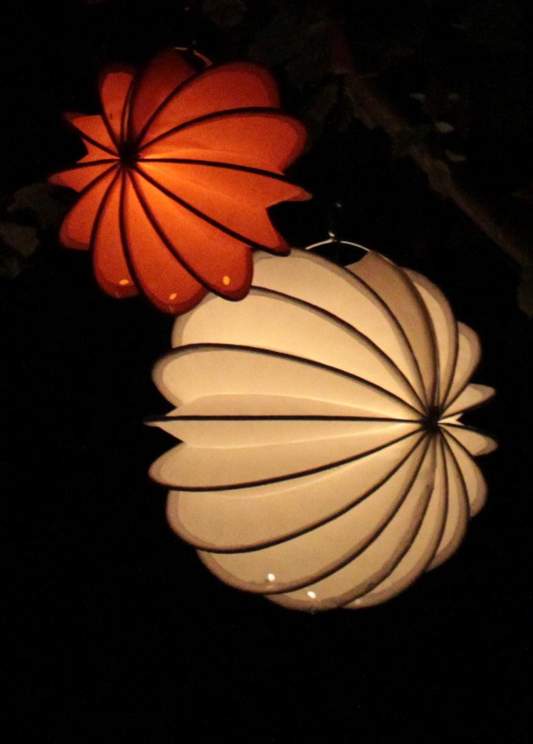 Wetterfeste Lamions bei Nacht