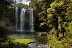 Whangarei Falls II - Neuseeland - Nordinsel