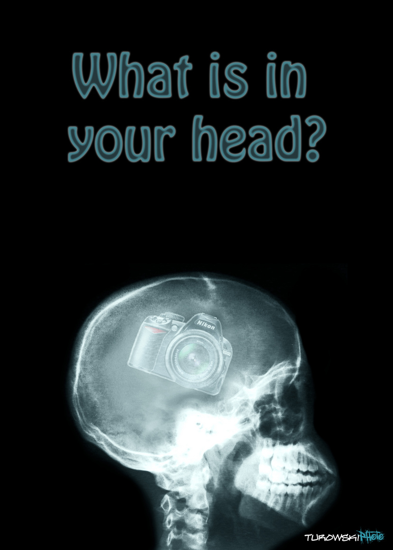 What is in your head?