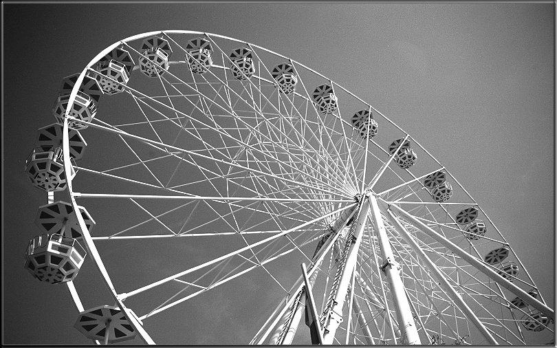 wheel von Gabriele Willig