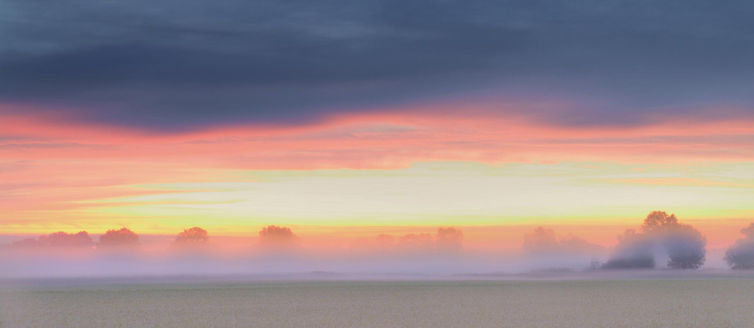 when the sun breaks through the fog