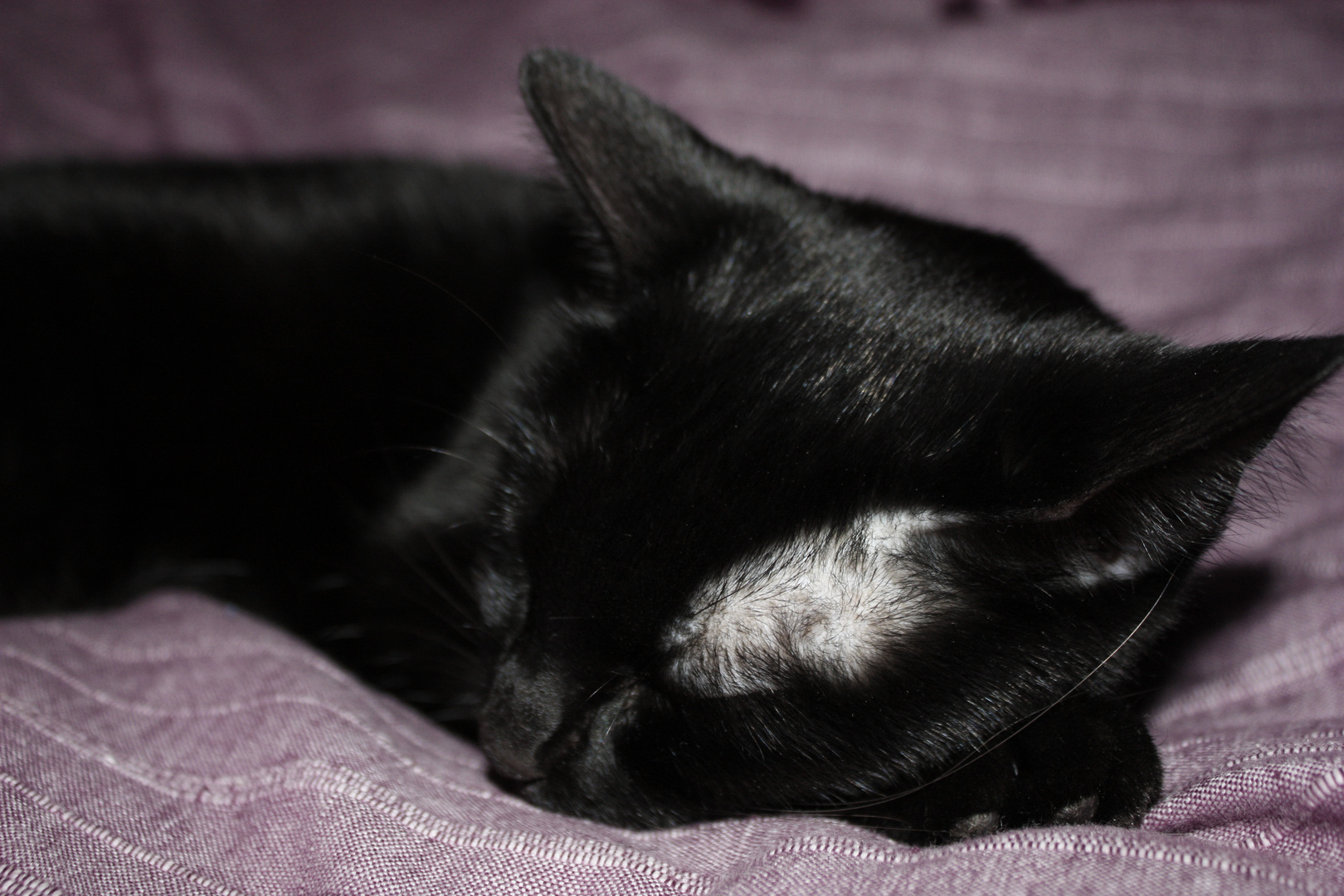 while she was sleeping..