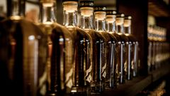 Whiskygenüsse