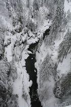 White Austria