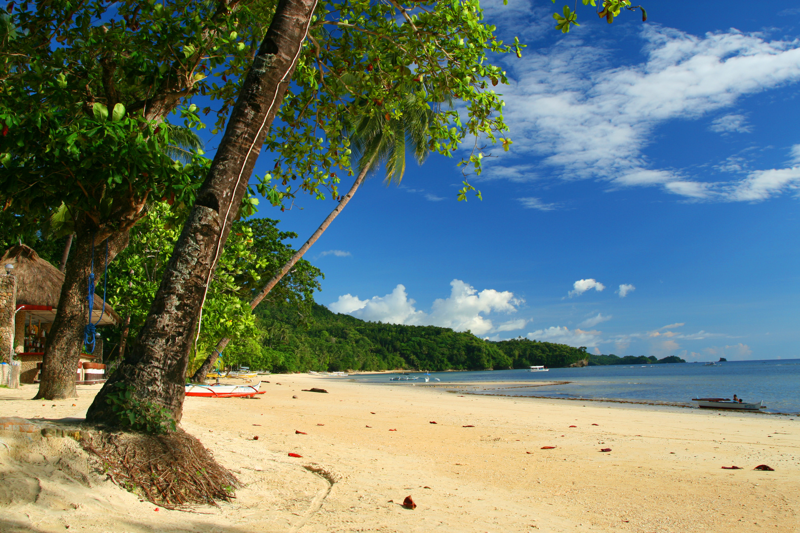 White-Beach