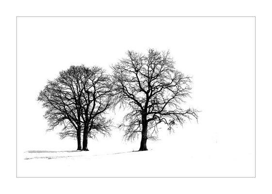 White Empty