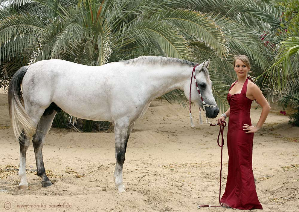[white horse with red dressed woman]