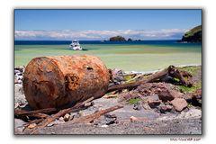 White Island (Whakaari) 10