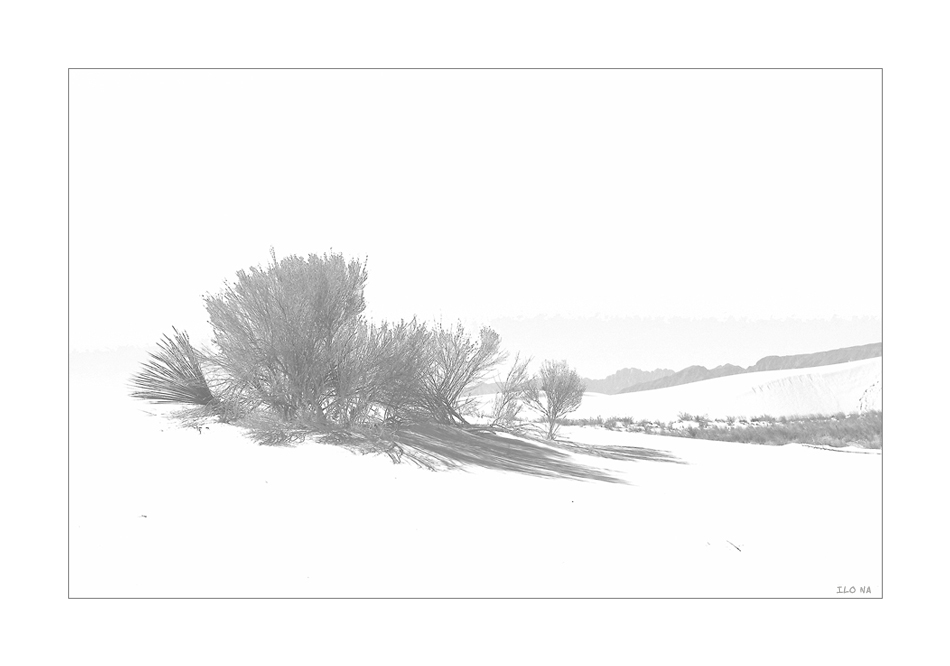 White Sands [5]