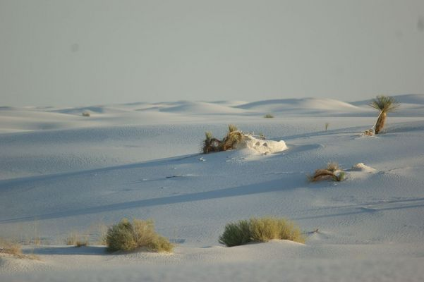 White Sands....eine andere Welt