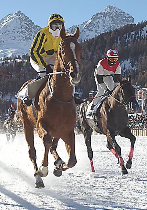 White Turf St. Moritz 2004