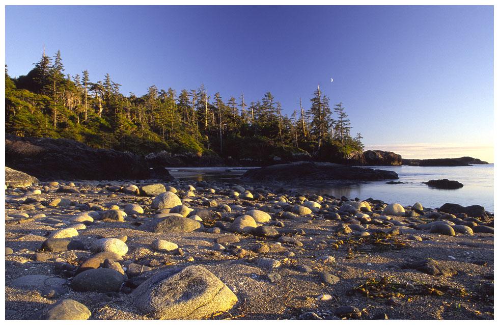 Wickanninish Beach . . .