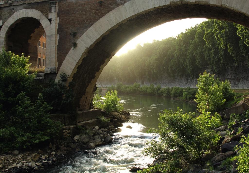 Wid river Tiber