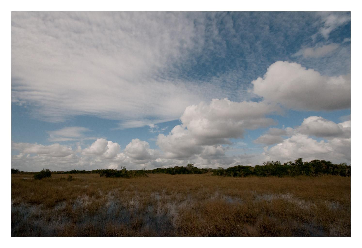 $$ wide Everglades $$