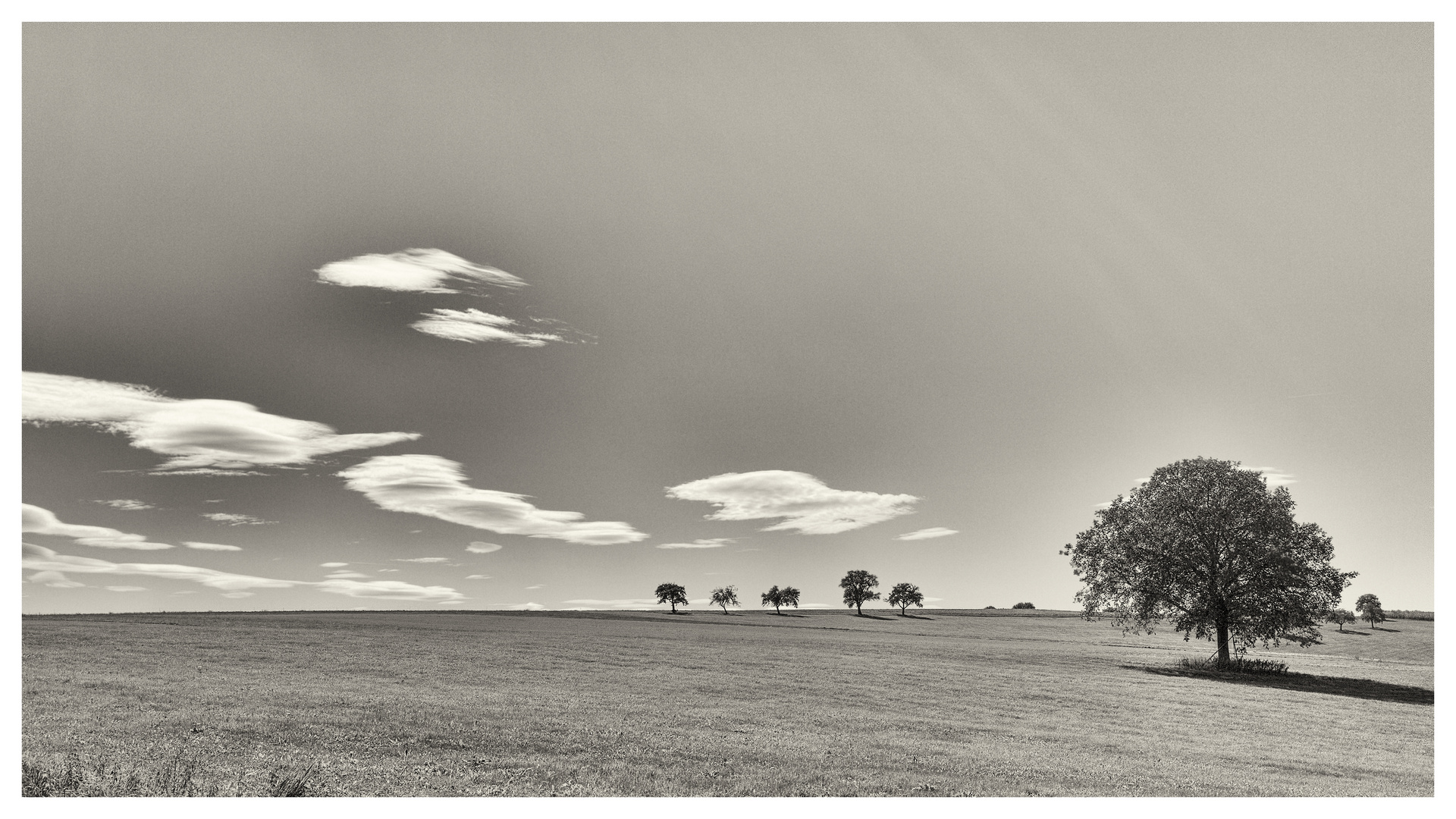 ...wide open spaces...