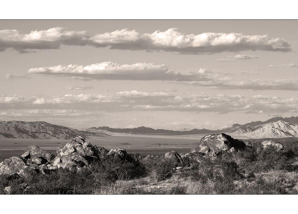Wide Plains