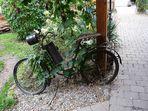 Wie Dazumal -Fahrrad