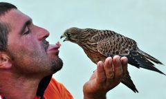 Wie der Falkner zum Zungenpiercing kam