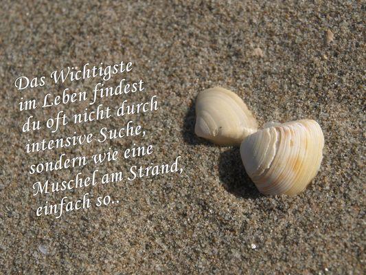 ...wie eine Muschel am Strand