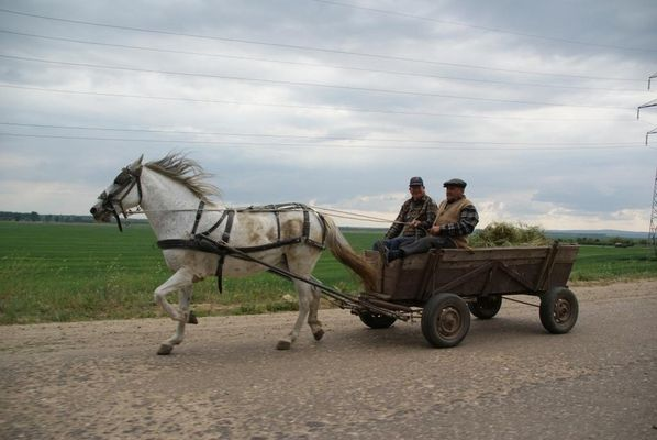 Wie in alten Zeiten; Rumänien `08