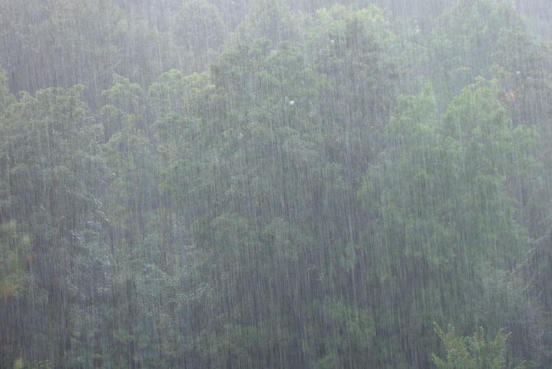 wieder mal Regen