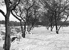 ..wieder Winter..