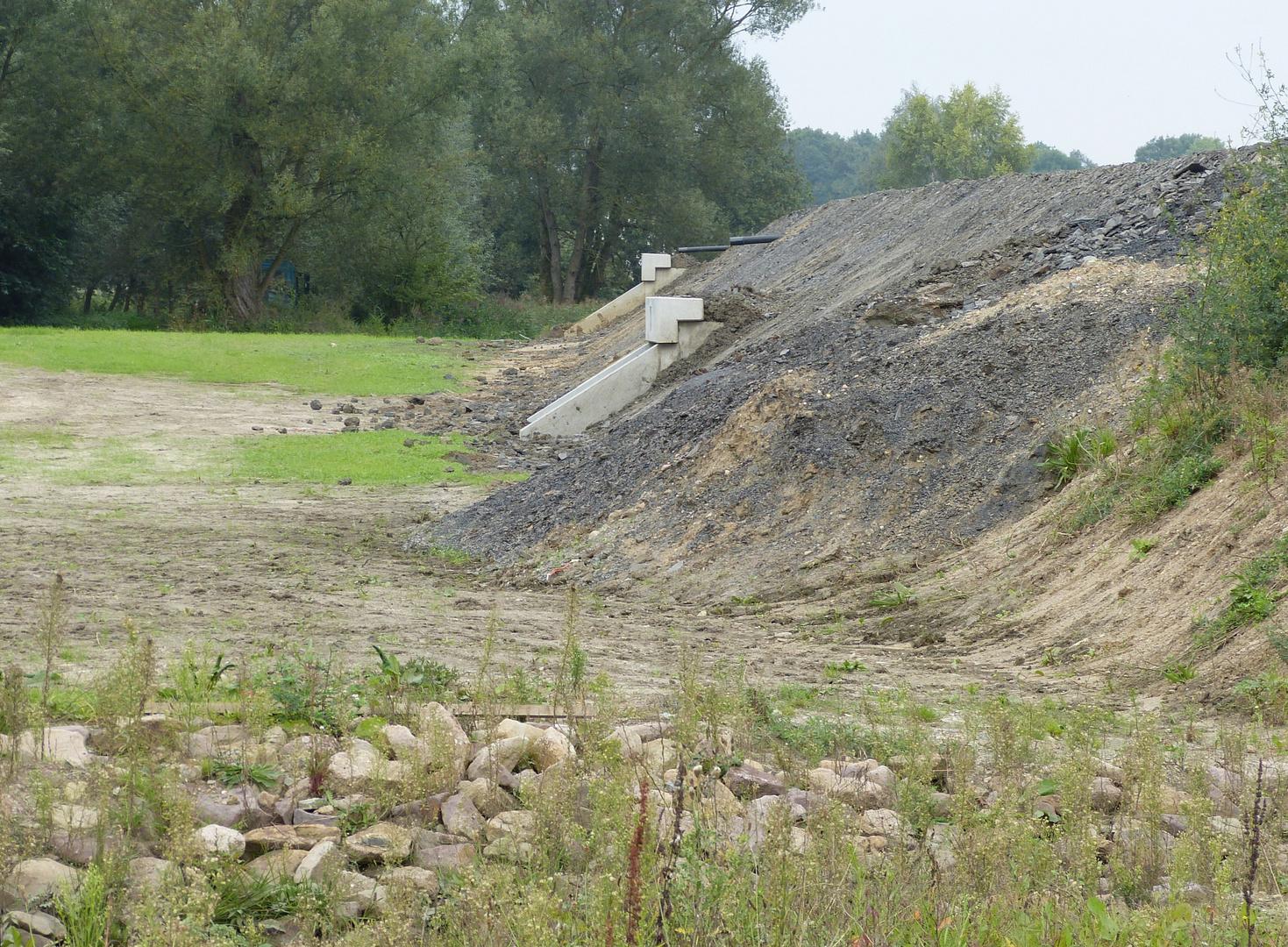 Wiederherstellung der Amphibienwege unter der 4 spurigen Fahrbahn