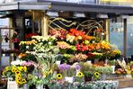 Wien - Blumenstand