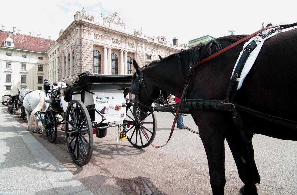 Wien- die kleinen Dinge