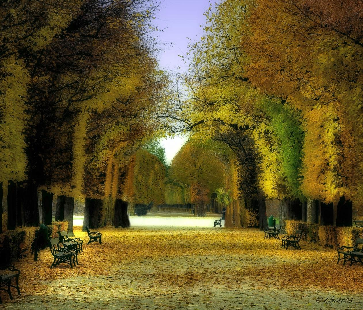 Wiener Herbst