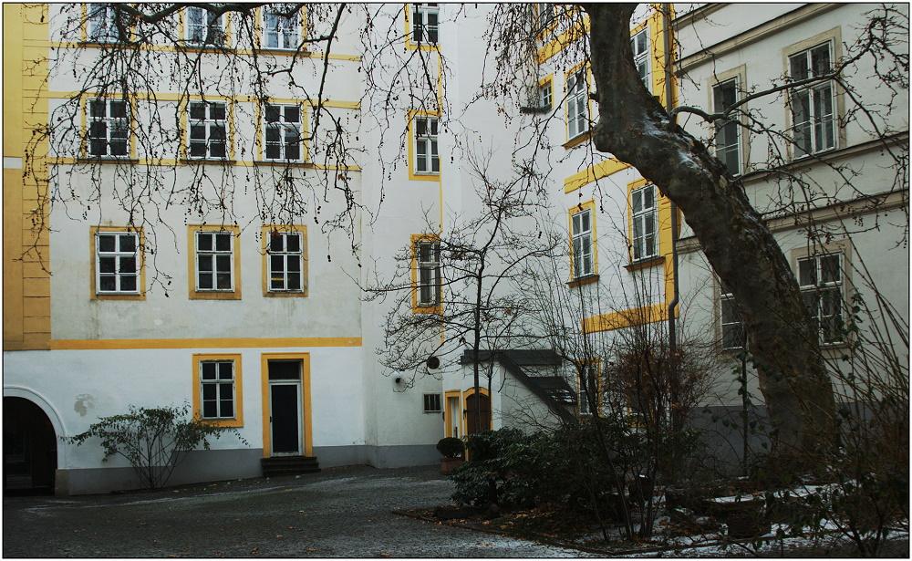 ... Wiener Hinterhof ...