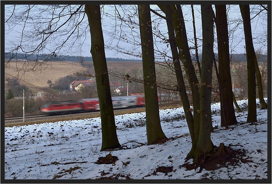 Wienerwaldpartie