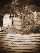 Wiens Dächer
