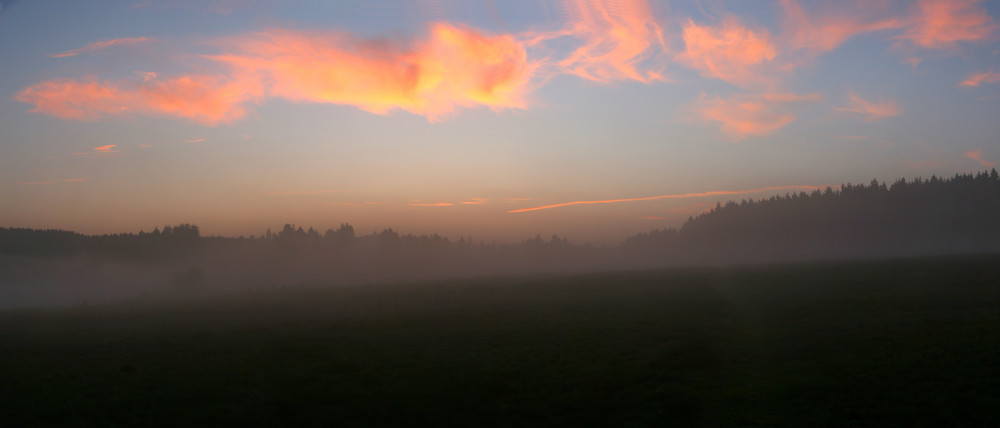 Wiese (bei Buntenbock) in der Morgendämmerung