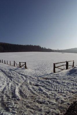 Wiese im Schnee