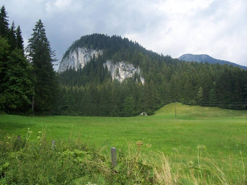Wiese mit Berg