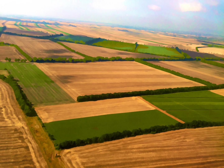 Wiesen, Felder, Wälder und Äcker