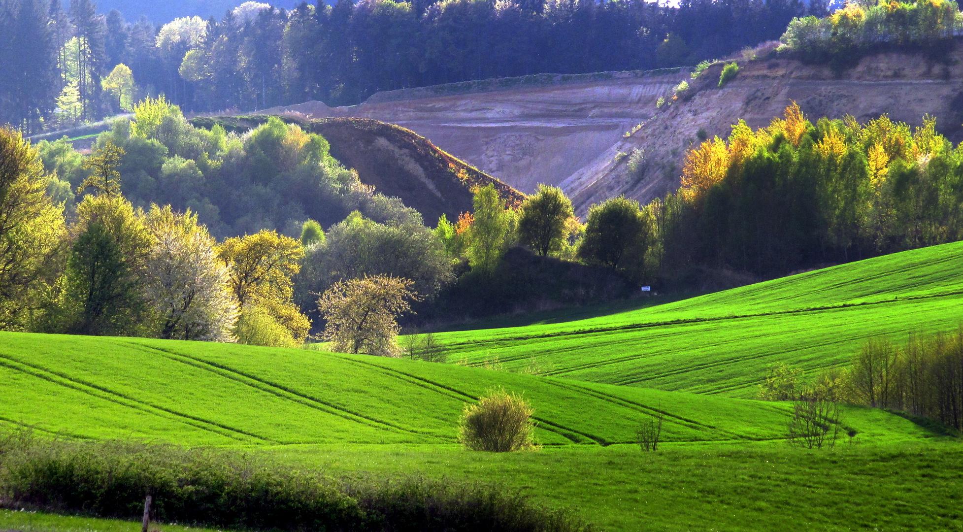 Wiesen, Wälder, Felder