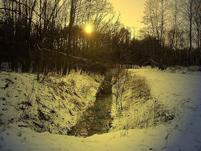 Wiesenbach im Winter ( Nachbearbeitet mit Photoimpact 6)