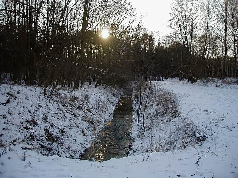 Wiesenbach im Winter (  Original )