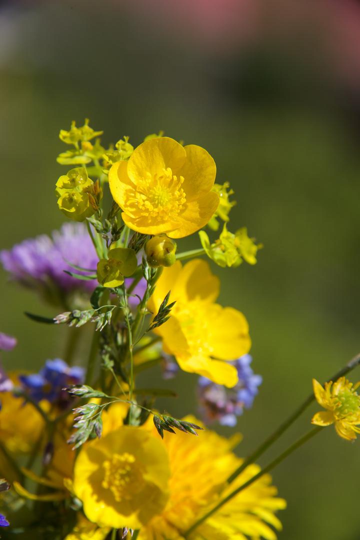 Wiesenblumenstrauß 4