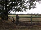 Wiesengrund in Schleswig-Holstein