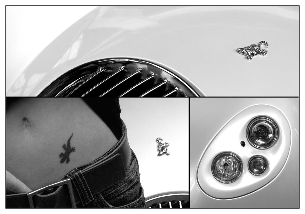 Wiesmann GT Collage