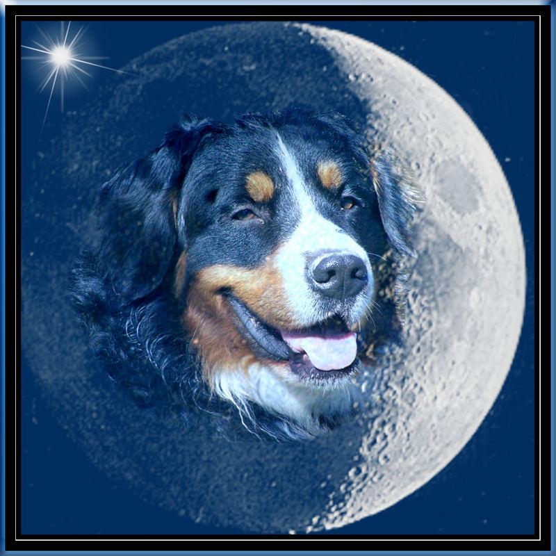 Wieso eigentlich Mann im Mond ???