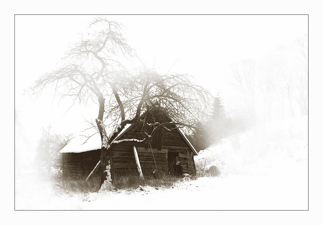 Wieviele Winter...