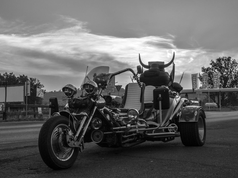 Wiking-Trike