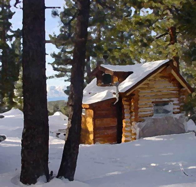 Wild Cat Cabin